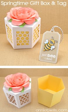 Springtime Gift Box and Tag by Annie Williams - made using stamps by Pink & Main and my Silhouette CAMEO