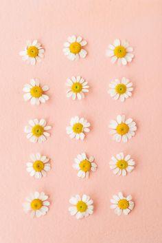 All I want for summer is daisies!! #daisy #mood #decoratingideas #backdroap