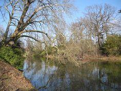 Lake in Bois de Boulogne, Paris.