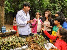 Aula do nosso guia Rigo Dan Samudio sobre as principais ervas paraguaias.