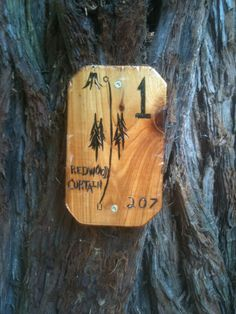 Simple yet effective signage that fits into the natural surroundings of a disc golf course. This signage comes from The Redwood Curtain in Arcata, CA.
