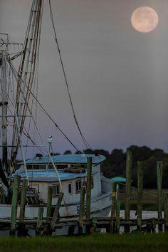 Beaufort SC shores