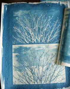 Cyanotype- try not inverting the image and use that to make a print too
