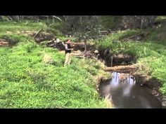 Some creek restoration work that took place around the Wagga region. See the full story at: http://permaculture.org.au/2010/09/28/permaculture-creek-repair/