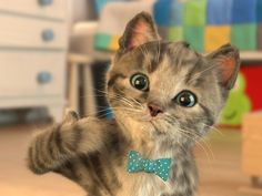 Little Kitten Fun My Cute Cat - Playful Pet Care & Learn Colors Cartoon for Children - Best Games for Kids HD - Education Apps for Kids, Children and Toddler. Cute Kitten Gif, Cute Kittens, Little Kittens, Little Pets, Nyan Cat, Cartoon Cartoon, Ipod Touch, Tuning Motor, Cat App