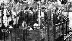 Οι κολασμένοι «κλουβίτες» της κατοχής   Ημεροδρόμος