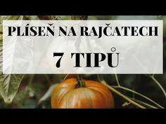 Plíseň na rajčatech - 7 tipů jak s ní bojovat - YouTube Pumpkin, Vegetables, Youtube, Pumpkins, Vegetable Recipes, Squash, Youtubers, Veggies, Youtube Movies