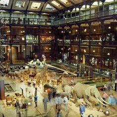 Paris Natural History Museum