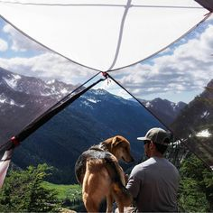 """""""We asked for a room with a view. We were not disappointed. #campingwithdogs @timothyvolk"""""""