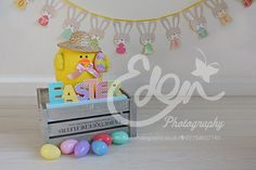 Digital Download Backdrop Easter Chick Rabbits by EdenMedia1