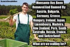 GMOs banned in these countries. if the US doesn't wake up.maybe move to one of these places! Save The Planet, South Australia, Way Of Life, Genetics, Food For Thought, Things To Think About, Healthy Living, Health Fitness, How To Remove
