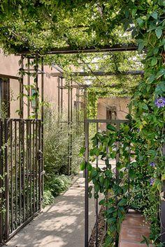 A Progressive Mission Style Estate in San Juan mediterranean landscape Privacy Fence Landscaping, Garden Privacy, Herb Garden Design, Love Garden, Terrace Decor, Patio Plants, Modern Fence, Outdoor Rooms, Garden Inspiration