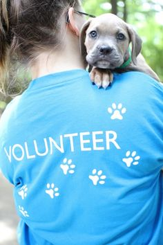 Family Volunteering: The Importance of Volunteering with your Children. Lynsey Gottselig - Leon County Humane Society