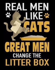 down to the nitty gritty ! Crazy Cat Lady, Crazy Cats, I Love Cats, Cool Cats, Siamese Cats, Cats And Kittens, Cat Quotes, Funny Quotes, Animal Quotes