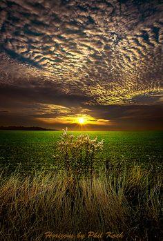 Nature is amazing!