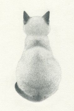 Akiko Kojima:  Simple and beautiful pencil drawing