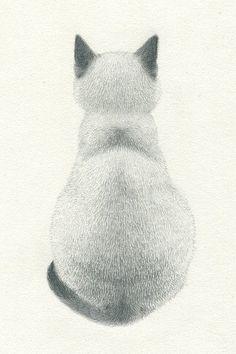 Akiko Kojima:  Simple and beautiful pencil drawing