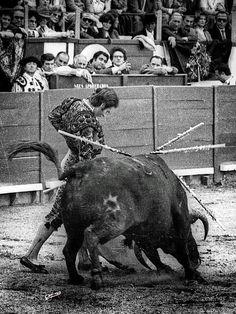 Rafael de Paula Ranch Life, Rodeo, Sculpting, Spanish, Old Things, Mexico, Culture, Horses, Watercolor