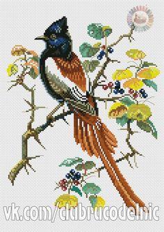 Cross Stitch Letters, Cross Stitch Bird, Cross Stitch Animals, Cross Stitch Flowers, Cross Stitching, Cross Stitch Embroidery, Hand Embroidery, Owl Quilt Pattern, Needlepoint Patterns
