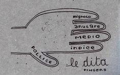 Learning Italian Language ~ Le dita (Finger)