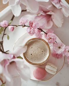 Coffee Break, Iced Coffee, Coffee Time, Morning Coffee, Tea Time, Macarons, Feeds Instagram, Coffee Flower, Coffee Heart