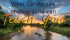 What wildlife photographers can learn from landscape photography.