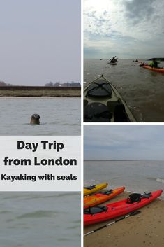 If you love wildlife and nature then kayaking with seals is the perfect day trip from London for you! Nomad Sea Kayaking company offers lots of kayaking adventures in the UK. This day trip we set off from Harwich and the seal watching was the highlight of the trip! We also enjoyed walking at Dovercourt Beach and having a picnic at Stone Point. Great day trip from London!