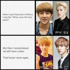 Lol true fact. #Sehun #Luhan #Hunhan