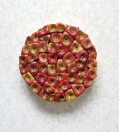 Beautiful and creative works of art created by Turkish artist Sakir Gokcebag.      Carefully sliced fruits and vegetables are strategically arranged into patterns and shapes. Food Art is then photographed from above.