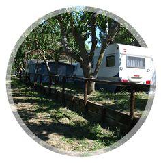 Sconto del 20% Mobil Home e del 30% Caravan, prima settimana di settembre 2013 al @CampeggioCapalbio ;) http://www.ilcampeggiodicapalbio.it/offerte.php