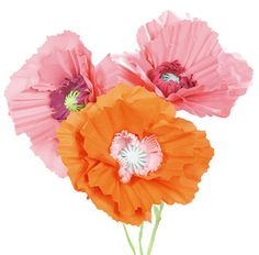 DIY: How to make Giant Paper Poppy Flowers  --  follow this link:  http://www.chiccheapnursery.com/2011/do-it-yourself/diy-how-to-make-giant-paper-poppy-flowers/