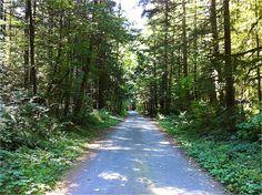 Hicks Lake Trail.