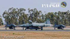 Northrop F-5EM FAB 4851, 1º/14º Gav Esquadrão Pampa, Base Aérea de Anápolis, 2014 - Foto: Roberto Valadares Caiafa — em Base Aerea De Anapolis