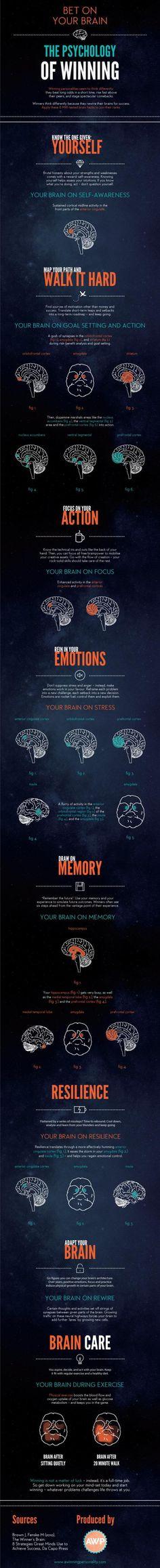 The psychology of winning (Infographic)   ScienceDump
