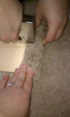 Deals Worth Mentioning: DIY Cat Shelves