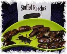 Stuffed Roaches