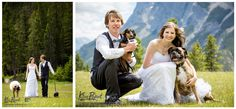 Banff, Canmore, Lake Louise Wedding Photographer, Outdoor ceremony, Tunnel Mountain Reservoir, bride and groom outdoor portrait with dogs, www.kimpayantphotography.com Emerald Lake, Outdoor Portraits, Outdoor Ceremony, Banff, Rocky Mountains, Groom, Wedding Photography, Romantic, Bride