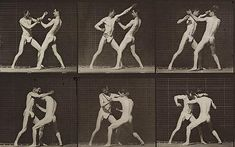 Google Image Result for http://i.telegraph.co.uk/telegraph/multimedia/archive/01709/muybridge3_1709581c.jpg