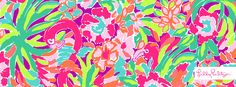 Lilly Pulitzer Lulu Print- Cover Photo