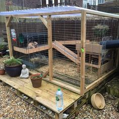 Our Customers Runaround: Rabbit and Guinea Pig Runs Guinea Pig Run, Guinea Pig Hutch, Guinea Pig House, Bunny Hutch, Rabbit Shed, House Rabbit, Rabbit Hutch And Run, Meat Rabbits, Raising Rabbits