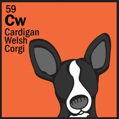 Cardigan Welsh Corgi from the DOG Table of the Elemutts poster can be found at www.dogtable.com  cute!