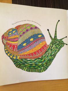 Millie marotta snail animal kingdom