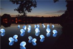 Led lights inside balloons and floating on water. perfect!