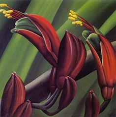 Flax by Diana Adams. This print shows the flowers of the harakeke, or flax that grows plentifully around New Zealand