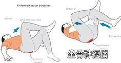 ■ 坐骨神経痛とは? 坐骨神経痛は、お尻から足の後ろ側にかけて生じる痛みやしびれ、麻痺などの症状のことをさします。ちなみに坐骨神経は腰から太股にある後大腿皮神経、膝部分の総腓骨神経、ふくらはぎにある脛骨神経などの大きな神経と足底神経などの小さな神経によって成り立ってます。 坐骨神経痛の原因として最も多いのが「椎間板ヘルニア」です。脊椎腫瘍、脊柱管狭窄症、脊椎分離症、脊椎すべり症な...