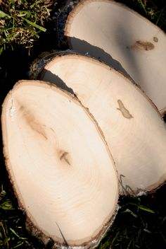 """Wood Tree Slices w/ Bark 11"""" x 7""""   $5 each / 3 for $4 each   Be awesome to Paint on"""