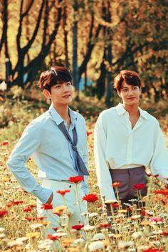 Kai and Baek