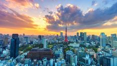 Aesthetic Japan, City Aesthetic, Travel Aesthetic, Tokyo City, Tokyo Japan, Digital Art Beginner, Dark Green Aesthetic, Tokyo Tower, City Photography