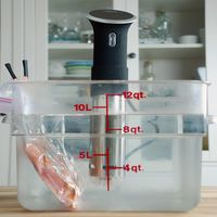 How to Prevent Sous Vide Bags From Floating - Amazing Food Made Easy