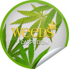 Weeds: Carpe Diem...Seize the day and check-in to Weeds with GetGlue.com for this green sticker!